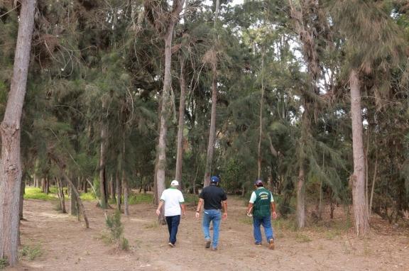 Parque Ecológico y Turístico: futuro pulmón de Nuevo Chimbote
