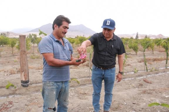 Gestión comprometida con el desarrollo de los productores agrícolas locales