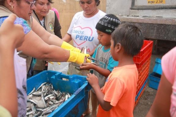 Donación de 8 toneladas de anchoveta en los pueblos del Sur